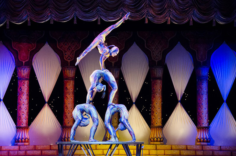 acrobats-teamwork-pitch-in-a-day